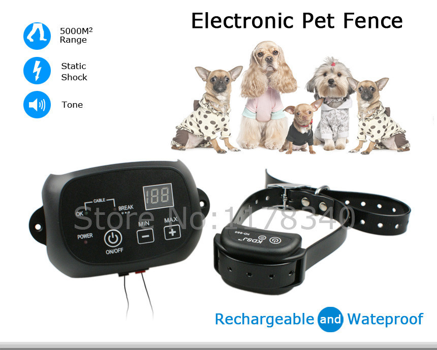 how to set up dog electric fencing
