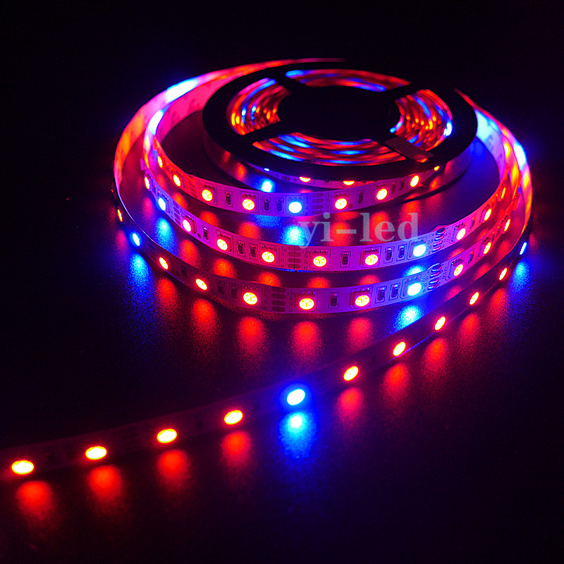 Wholesale 50m10x5m 5050 60LEDs/m 5:1 5 Red 1 Blue LED Growing Strip Light Aquarium Greenhouse Hydroponic Non-waterproof DC12V(China (Mainland))