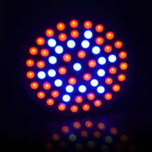 New Full Spectrum E27 60Leds 41 Red :19 Blue Led Grow Lamps For Flowering Plant and Hydroponics Outdoor Lightings 1PCS(China (Mainland))