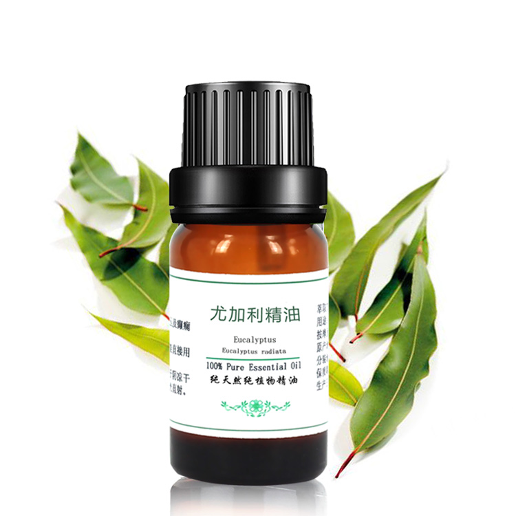 how to use eucalyptus oil for acne