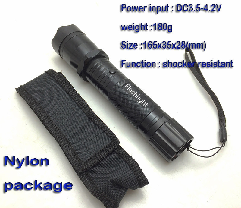 Type 1101 cree light flashlight