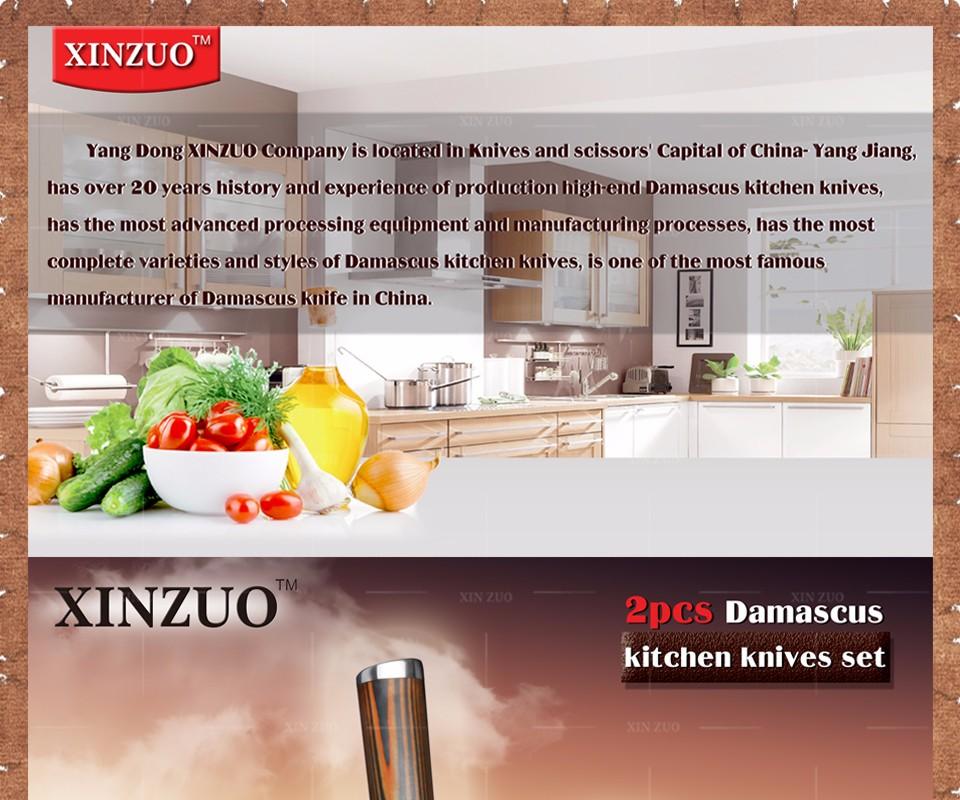 Buy XINZUO 2 pcs kitchen knives set 73 layer Damascus kitchen knife Japanese VG10 core chef utility knife wood handle free shipping cheap
