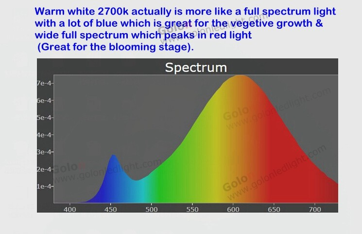 light com fullspectrum full spectrum learning bulb types lighting bulbs