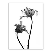 Минималистичный черно-белый растительный цветок тюльпаны фото художественные принты плакат Настенная картина холст картина без рамки дом...(Китай)