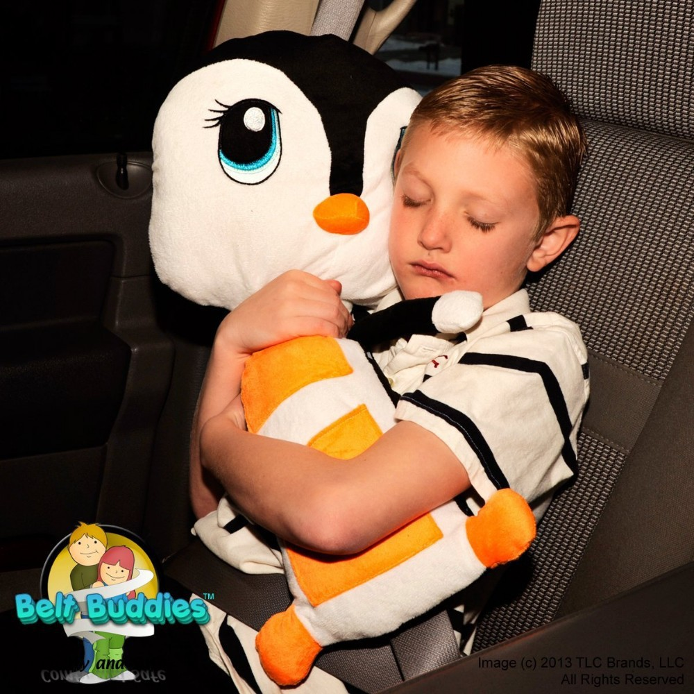 Car Seat Pets As Seen On Tv