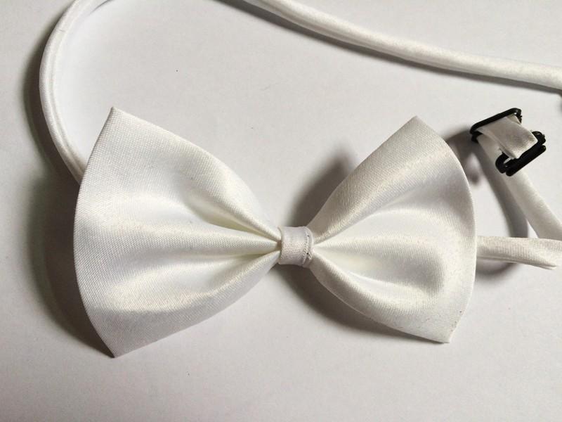 dog bows white
