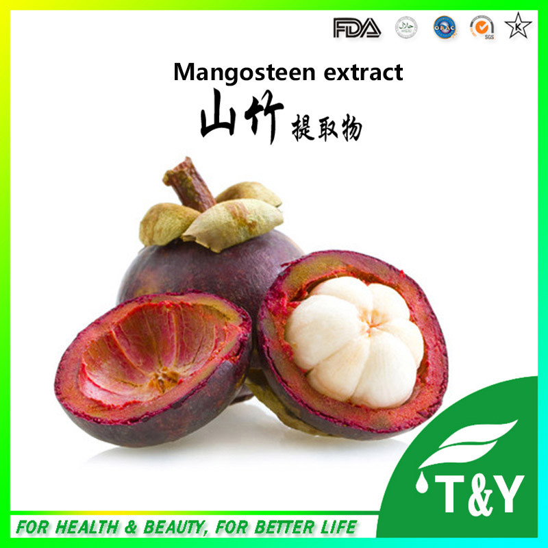 GMP Manufacturer Supply Mangosteen Peel Extract 600g<br><br>Aliexpress