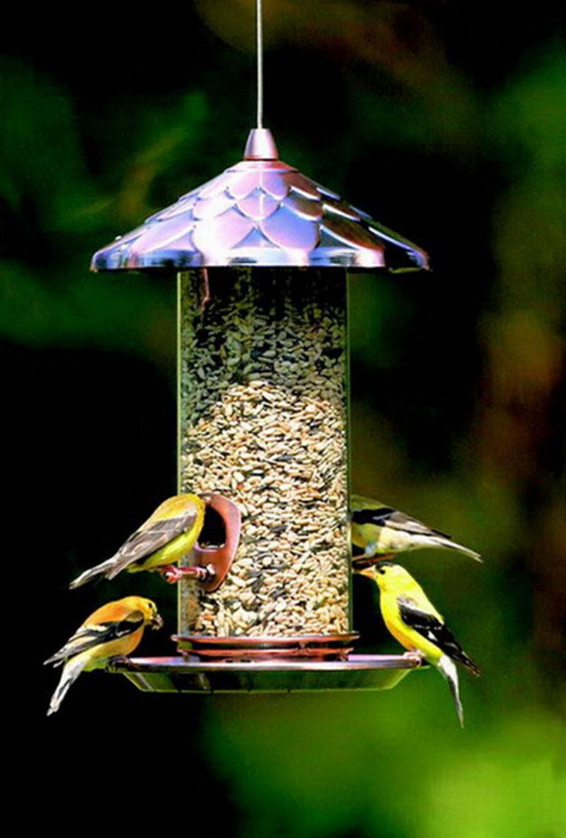 mangeoire oiseaux maison et jardin accessoires pour animaux. Black Bedroom Furniture Sets. Home Design Ideas