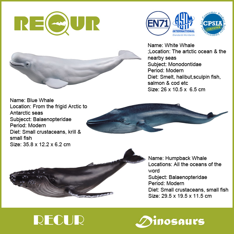 3pcs/set Recur Toys High Quality Whale Series High Simulation PVC Hand Painted Marine life Model Collection Xmas Gift For Kids(China (Mainland))