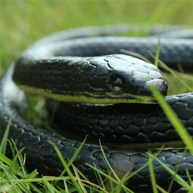 Realistic Soft Rubber Toy Snake Safari Garden Props Joke Prank Gift About 130cm(China (Mainland))