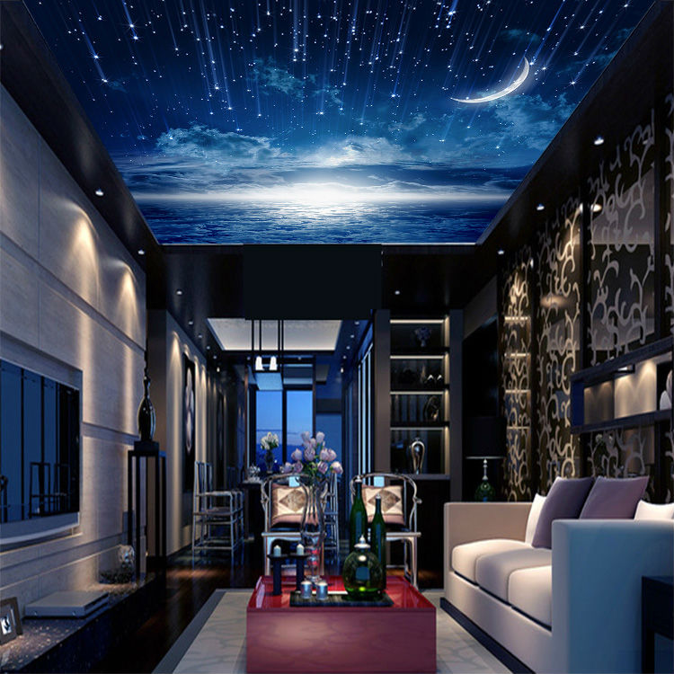 Amazing Starry Night Bedroom Ceiling  12  Starry Night Room. Starry Night Bedroom Ceiling   Eddiemcgrady com