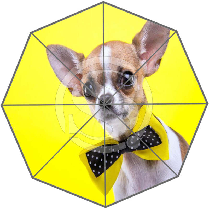 New Custom Cute dog Best Nice Cool Design Portable Fashion Stylish Useful Foldable Umbrella SQ0617=D0556(China (Mainland))