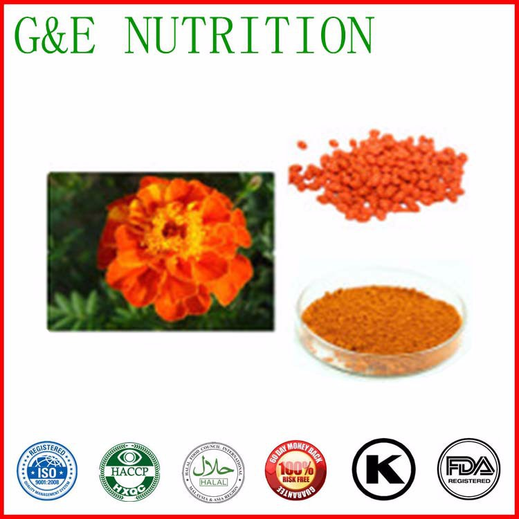 Marigold Flower Extract Zeaxanthin 40%/High Quality Marigold Flower Extract/Lutein/Lutein Price 100g