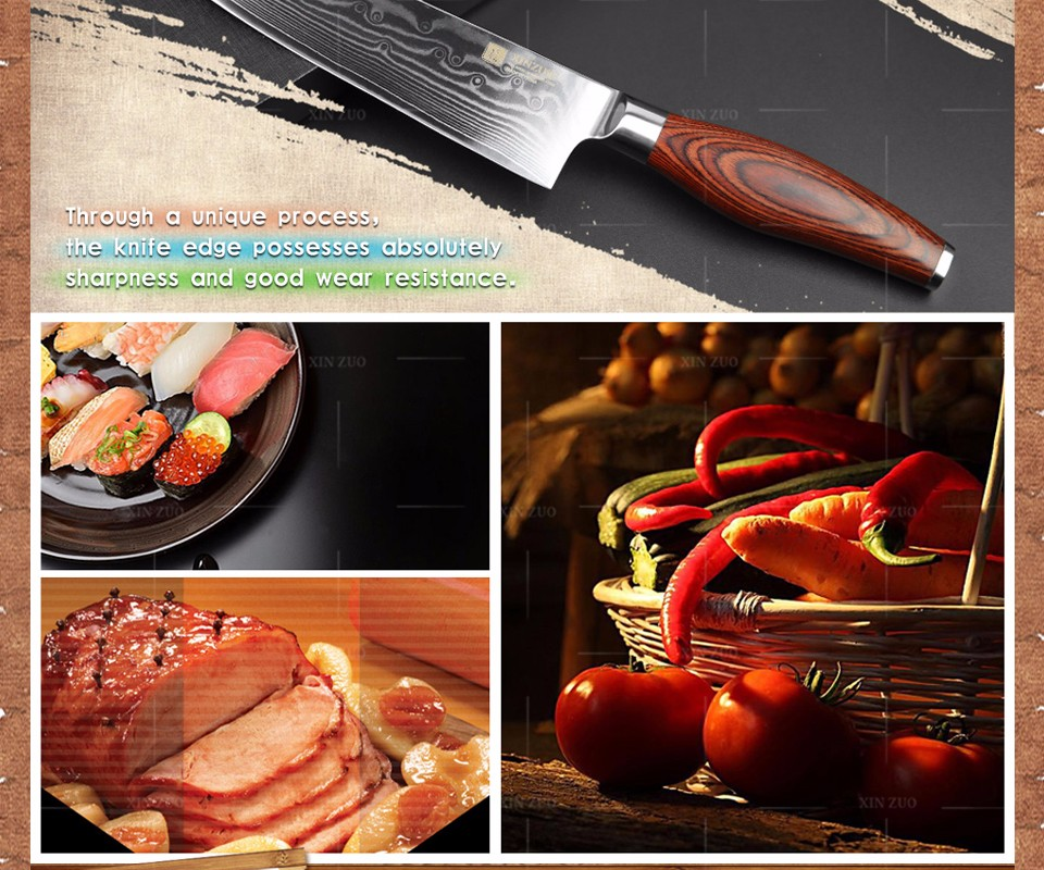 Buy XINZUO  8 inch chef knife 73 layers Damascus steel kitchen knife Japanese VG-10 cooker knife kitchen tool free Shipping cheap