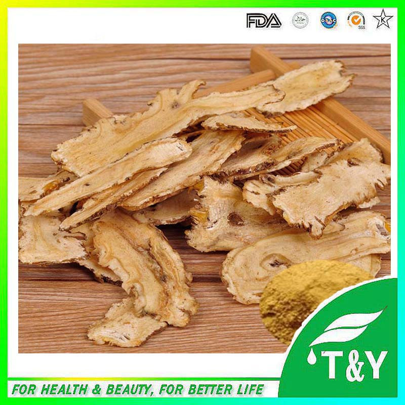 1% ligustilide chinese angelica extract/ angelica root extract/Angelica Root P.E.<br><br>Aliexpress