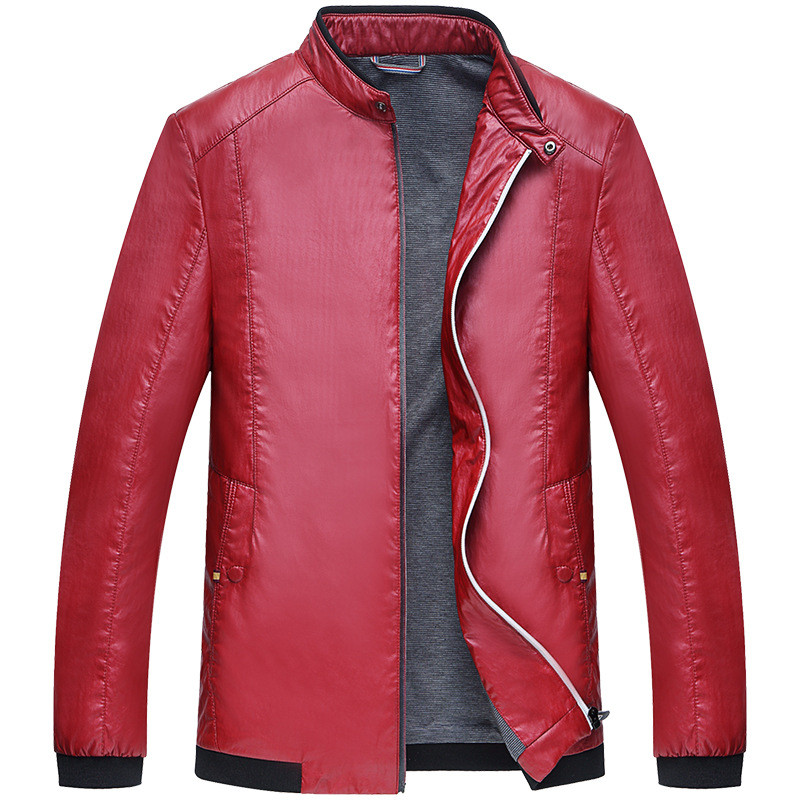 High quality 2016 Spring Mens PU Leather Jackets Thin stand Collar men Clothing korean Edition casual men PU jacket CoatОдежда и ак�е��уары<br><br><br>Aliexpress