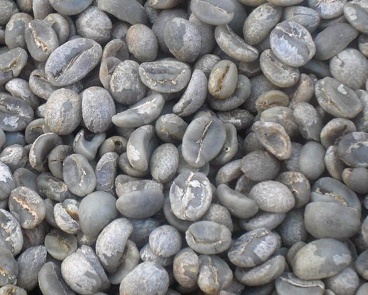 1000g China Yunnan Amall Coffee Beans Arabica A Green Raw Bean 1kg 2 2lb Free Shipping