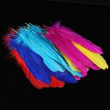 Buy 72 Pieces Craft Wild Goose Tail Wing Feather Millinery Mixed Colors 12-20cm for $2.69 in AliExpress store