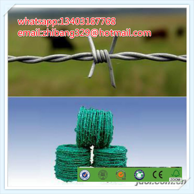 high tensile, BWG 16x16 | 12x14, hot dipped galvanized barbed wire for fencing protection(China (Mainland))