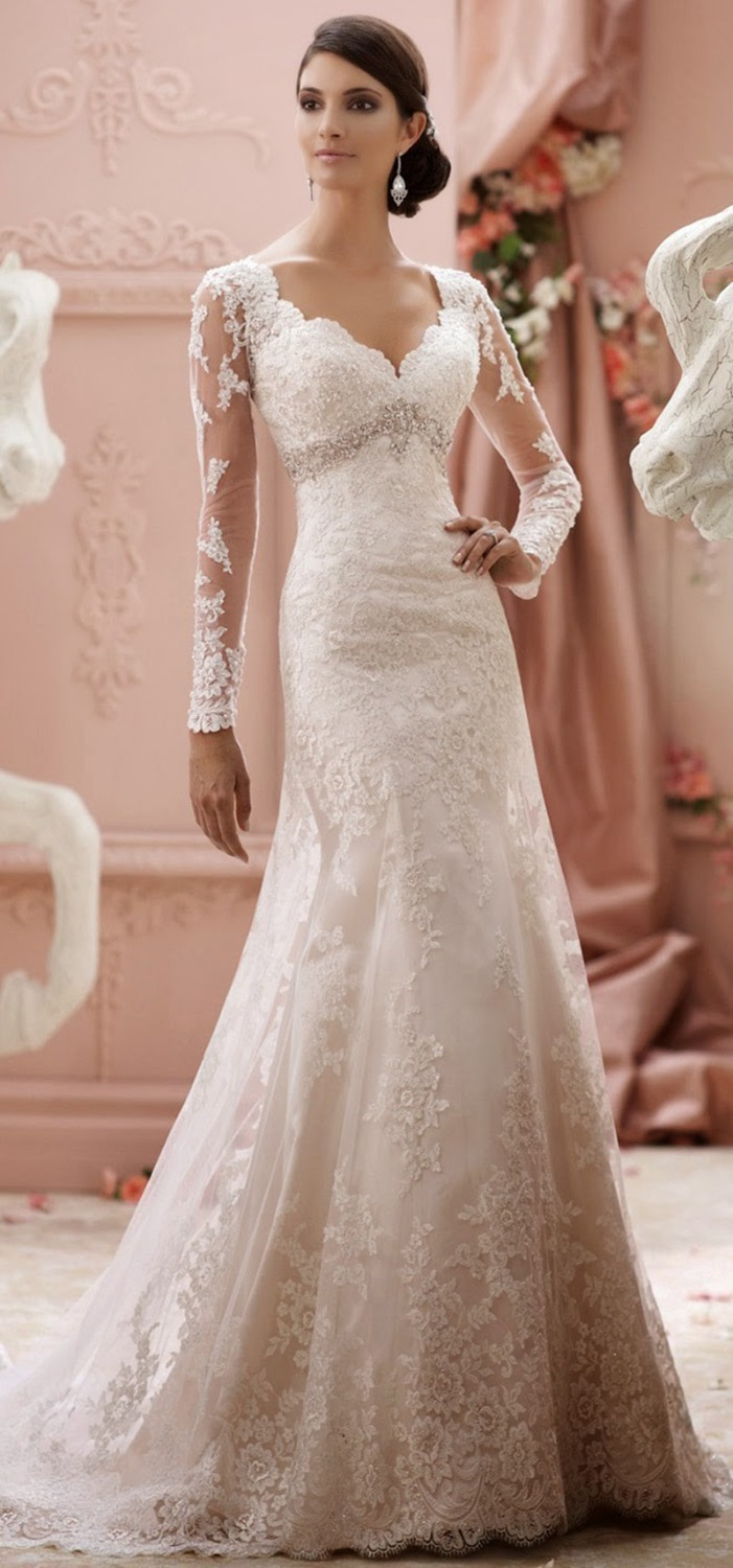 Elegant wedding dress long sleeve lace tulle modest bridal for Tulle wedding dress with sleeves