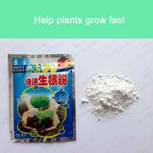 Quickly grows new roots, prevent seedling death, strong recovery root vigor, Garden of medicine 9g/bag(China (Mainland))