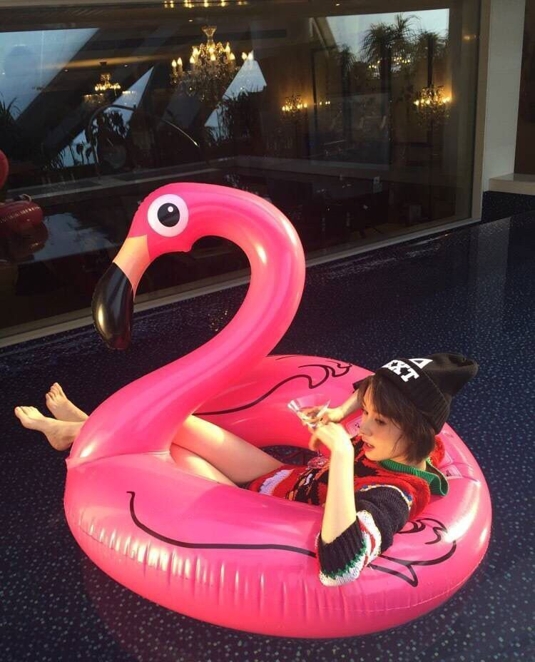 1.2m Plastic Inflatable Flamingo Pool Float Outdoor Leisure Swimming Laps Swan Swim Ring Holiday Water Ride-On Pool Toy(China (Mainland))