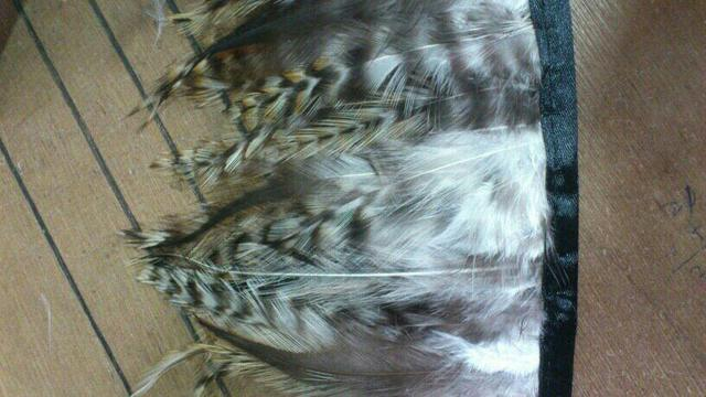 Decoration Feather, Chicken Feather Band