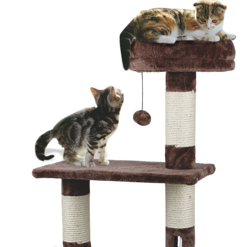 Cat Scratching Post + House + Activity Tree