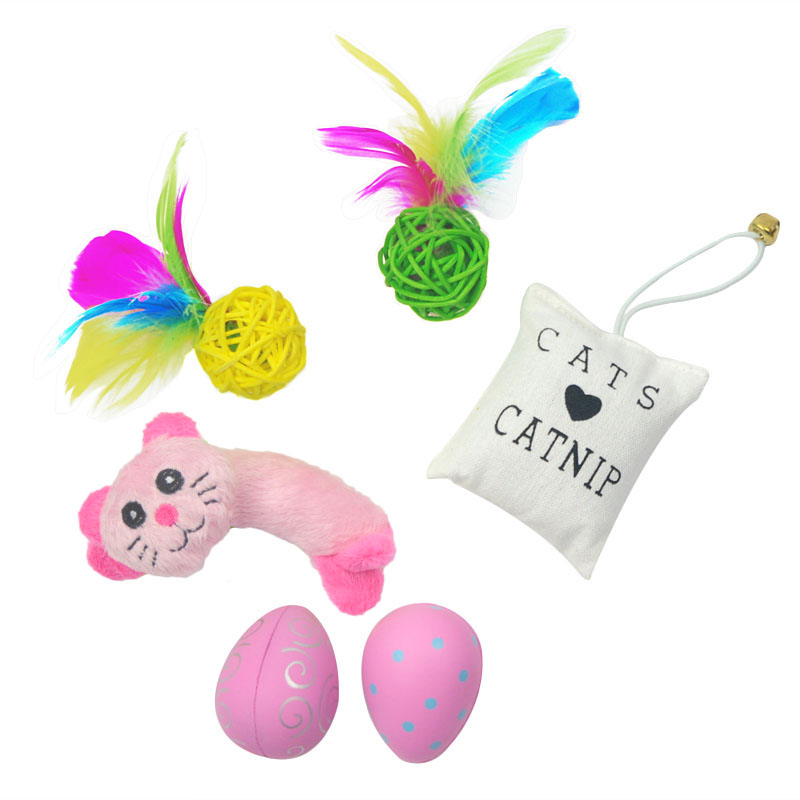 2016 new pet dog and cat toys very affordable pet toy package suits, pet training pet supplies interactive toys(China (Mainland))