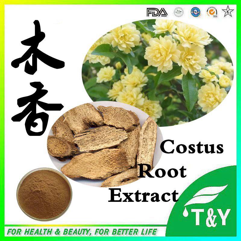 100% natural high quality Costus / Radix Aucklandiae Root Extract Powder 5:1 10:1