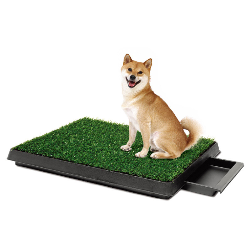 New 2016 Pet Potty Puppy Dog Toilet Training Mat Patch Absorbent Grass Pad Indoor Park Litter Tray Doggie Restroom(China (Mainland))