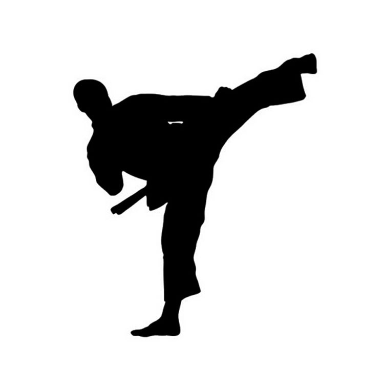 Adesivi per Auto Arti Marziali da Karate Moto per Kung Fu Taekwondo