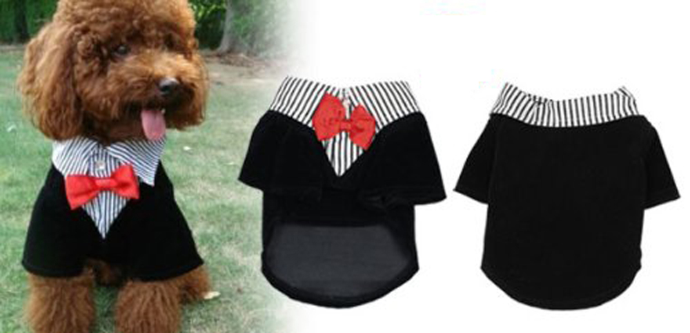 NEW FREE SHIPPING Pet Dog Pomeranian Clothes Groom Suit Tuxedo Coat Shirts Necktie M(China (Mainland))