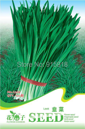 Buy 2 Get 1!(Can accumulate ) 1 Pack 100 Seeds Green Healthy Chives Fragrant Flowered Garlic Leek C068 - Grow Away Store store