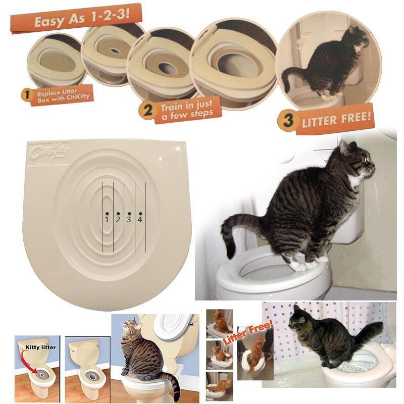 Обучающие средства для котов из Китая