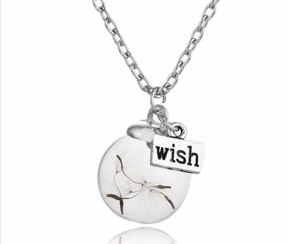 Wish dandelion eternal life dried flower seeds the glass plant specimens pendant sweater necklace(China (Mainland))