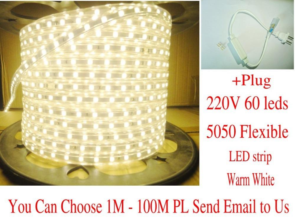 1M 5050 LED strip 220V 230V 240V white/warm white Waterproof flexible SMD led strips IP65 + Free Plug(China (Mainland))
