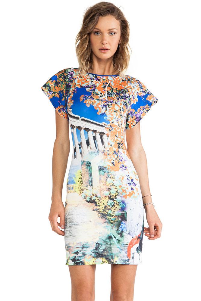 mini jardim acessorios:Print Artistic Dress