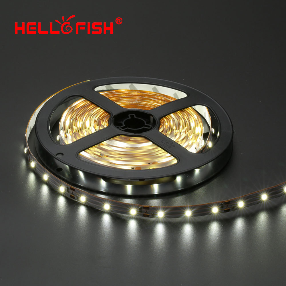 acheter bonjour poisson 5 m 300 led 3528 smd led bande 12 v flexible light 60. Black Bedroom Furniture Sets. Home Design Ideas