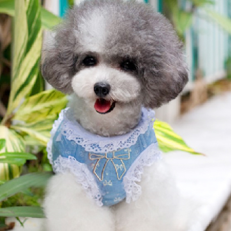 Cute Denim Small dog puppy vest and Leash Harness clothes Cat dog Pet lace Collars Leads for Yorkshire Chihuahua pet supplier(China (Mainland))