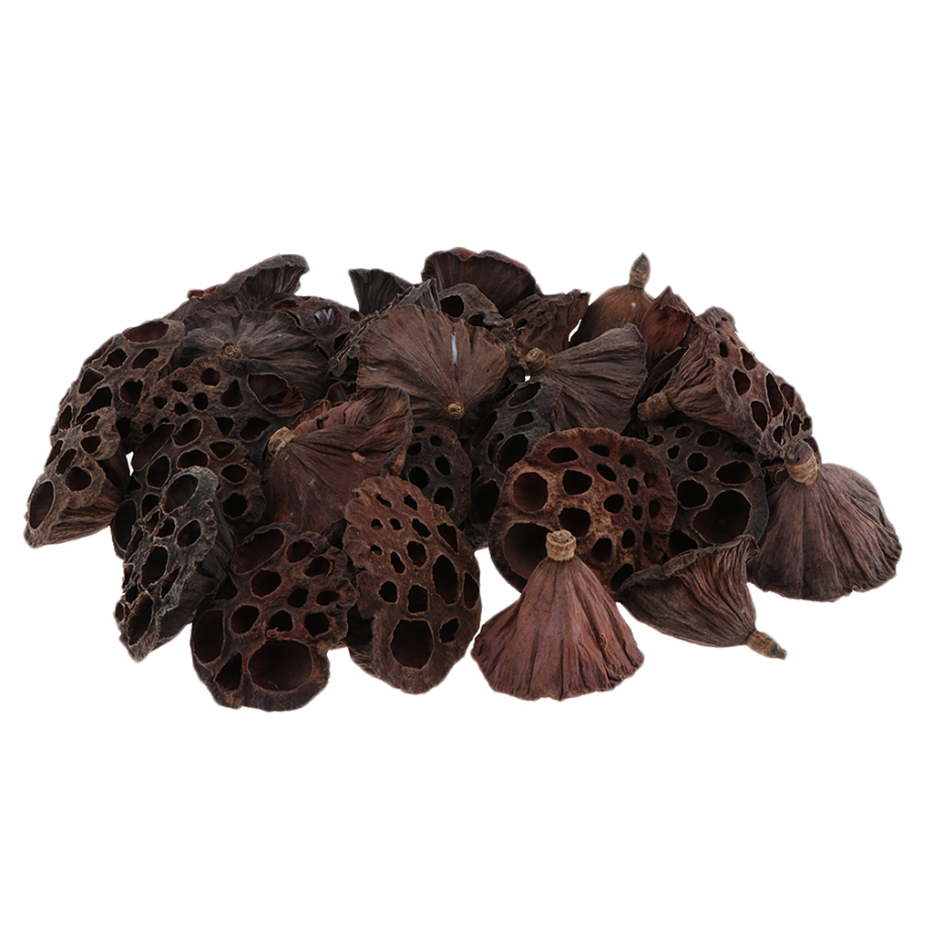150 Pieces Natural Dry Lotus Pod, Pressed Flowers For DIY Floral Decoration Crafts Home Party Decor Shop Cafe Ornament - 3-12cm