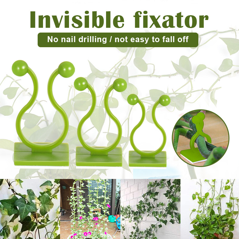 FilmHoo 100 Pcs Plant Climbing Wall Fixture Clips Holder,Multifunctional Vine Plant Climbing Wall Fixer Self-Adhesive Hook Invisible Wall Sticky Vines Fixing Clip Holder:White