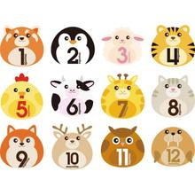 12 Pcs Month Sticker Baby Photography Milestone Memorial Monthly Newborn Kids Commemorative Card Number Photo Props Accessories(China)