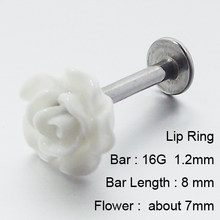 1 Piece 16G 1.2mm Stainless Steel Labret Rings Rose Flower Tragus Earring Lip Ring Earrings Body Piercing Jewelry(China)